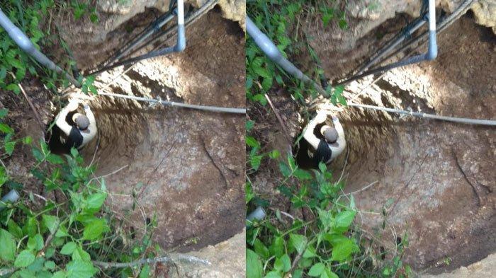 Pamit Cari Bekicot, Warga Dusun Pongkeng Sumenep Tak Kunjung Pulang, Ditemukan Tewas di Dalam Sumur