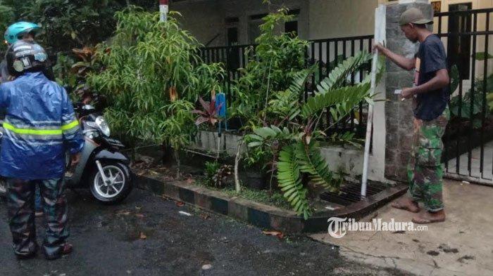 GEGER Buaya Muncul di Selokan Rumah Warga Kota Malang, Punya Panjang 3 Meter dan Kulit Bersisik