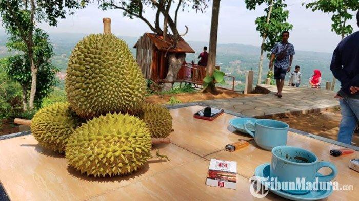 Makan Durian Sepuasnya diFestival DurianKasor di Pamekasan,Catat Tanggal dan Lokasinya!