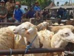 aktivitas-pedagang-hewan-ternak-jelang-idul-adha-2020-di-pasar-hewan-ngrame.jpg