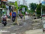 banyak-pohon-pisang-berdiri-di-sepanjang-jalan-sidorono-barengkrajan-krian-sidoarjo.jpg