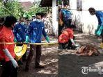 evakuasi-jenazahtumiran-80-warga-dusun-tutul-desa-banjarejo-kecamatan-rejotangan-tulungagung.jpg