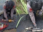 evakuasi-mortir-di-dusun-mergosingo-desa-jatirejoyoso-kecamatan-kepanjen-malang.jpg