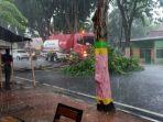 evakuasi-terhadap-pohon-yang-tumbang-di-jalan-jokotole.jpg
