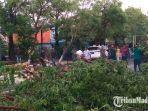 hujan-lebat-dan-angin-kencang-tumbangkan-puluhan-pohon-rusak-balai-desa-dan-pju.jpg