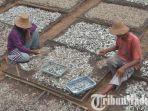 ikan-teri-nasi-dijemur-di-samping-pabrik-mahera-desa-tanjung-kecamatan-pademawu-pamekasan.jpg