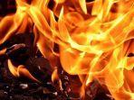 ilustrasi-api-bakar.jpg