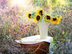 ilustrasi-bunga-matahari-2.jpg