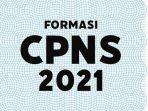 ilustrasi-pengumuman-formasi-cpns-2021.jpg