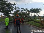 kabupaten-bangkalan-kembali-diterjang-hujan-dan-angin-kencang-jumat-6112020-2.jpg