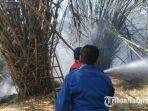 kebakaran-lahan-bambu-desa-kasoan-kecamatan-sampang-kabupaten-sampang-madura.jpg