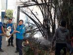 kondisi-ular-saat-di-amankan-oleh-anggota-pemadam-kebakaran-damkar-sampang-kamis-2692019.jpg