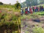 korban-ditemukan-tergeletak-di-sawah-miliknya-di-desa-tambahrejo-kecamatan-kanor-bojonegoro.jpg