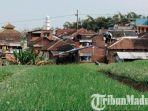 lahan-pertanian-di-kota-batu-yang-berada-di-dekat-pemukiman-padat.jpg