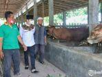 mochamad-nur-arifin-mengunjungi-kandang-komunal-peternakan-sapi.jpg