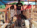 pedagang-kambing-kurban-di-jalan-soekarno-hatta-beni-setya-31.jpg