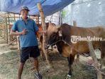 pedagang-sapi-bernama-nurkholik-di-depan-pasar-margalela-sampang.jpg