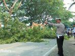 pemotongan-ranting-pohon-di-jalan-kapten-syafiri.jpg