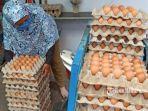 peternak-sedang-menata-telur-ayam.jpg