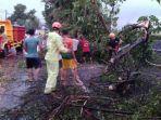petugas-bpbd-kabupaten-bojonegoro-mengevakuasi-pohon-tumbang-akibat-hujan-disertai-angin.jpg