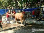 petugas-paramedis-kesehatan-hewan-dinas-pertanian-kabupaten-mojokerto.jpg