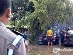 pohon-roboh-menimpa-sebuah-mobil-sedan-bmw-dan-toyota-avanza-di-bangkalan.jpg