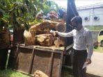 polisi-saat-mengamankan-barang-bukti-truk-bermuatan-kayu-jati-ilegal-di-mapolres-tuban.jpg