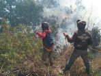 proses-pemadaman-kebakaran-hutan-di-kawasan-gunung-semeru.jpg