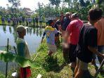seorang-nenek-yang-diketahui-telah-pikun-di-tulungagung-ditemukan-tewas-di-kolam-ikan-gurami.jpg