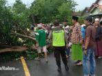 suasana-di-lokasi-pohon-tumbang-di-jalan-raya-torjun-kecamatan-torjun-kabupaten-sampang.jpg