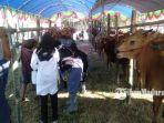 suasana-saat-pengunjung-mendatangi-bazar-hewan-kurban-murah-di-lapangan-desa-samatan.jpg