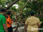 tim-frpb-pamekasan-saat-melakukan-evakuasi-pohon-yang-tumbang-di-jalan-trunojoyo.jpg