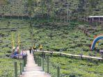 wisata-agro-rengganis-kebun-teh-gunung-gambir.jpg
