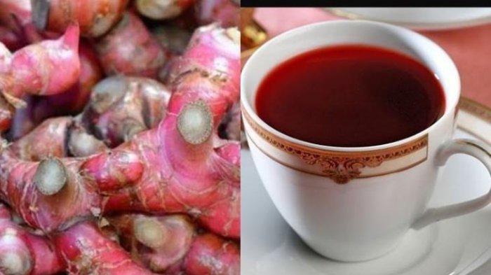 10 Resep Olahan Tanaman Herbal Jahe Merah yang Disebut Bisa Jadi