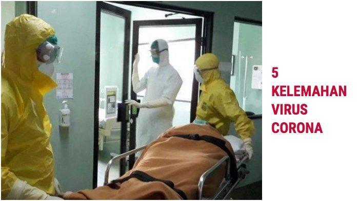Kini 138 Positif di Sulsel, Ternyata Ada 5 Kelemahan Virus Corona ( Covid-19 ), Cara Mematikannya