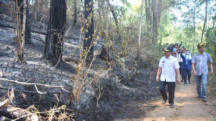 abd-rauf-malaganni-meninjau-lokasi-titik-titik-kebakaran-hutan.jpg