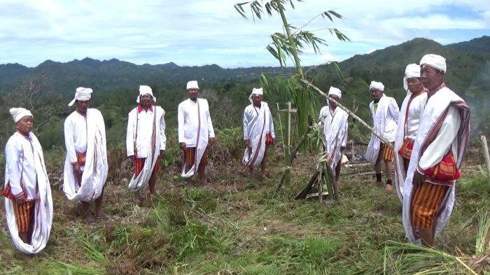 Tolak Bala Covid-19, Tokoh Adat di Balla Mamasa Gelar Ritual Ma'rompo Bamba