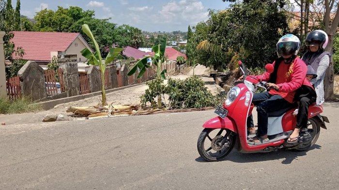 Senin (25/11/2019), Cuaca Kabupaten Wajo Cerah Berawan, 1 Kecamatan Diprediksi Hujan Lokal Sore Ini