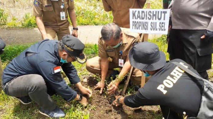 100 Ribu Bibit Pohon Ditanam di Datara Jeneponto