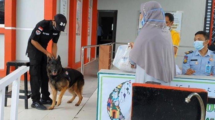 VIDEO: Cegah Penyelundupan Narkoba, Rutan Kelas I Makassar Dijaga Anjing Pelacak