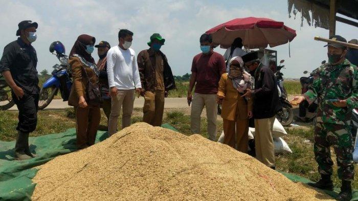 Antisipasi Harga Turun, Kementan Bersama Bulog Targetkan Serap Gabah di Jabar 270 ribu ton
