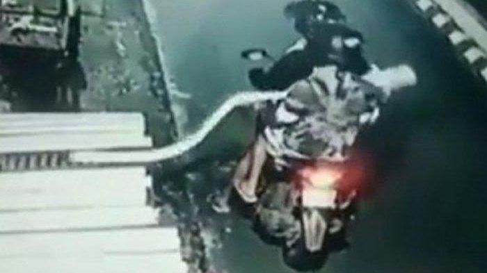VIDEO: Dua Pria Curi Tempe Sepanjang 2 Meter Terekam CCTV, Lokasi Kejadian