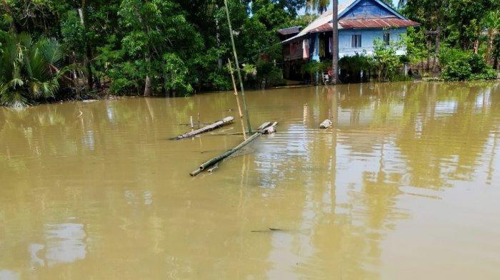 Banjir Rendam Tiga Desa di Kecamatan Sibulue Bone Surut, Aktivitas Warga Kembali Normal