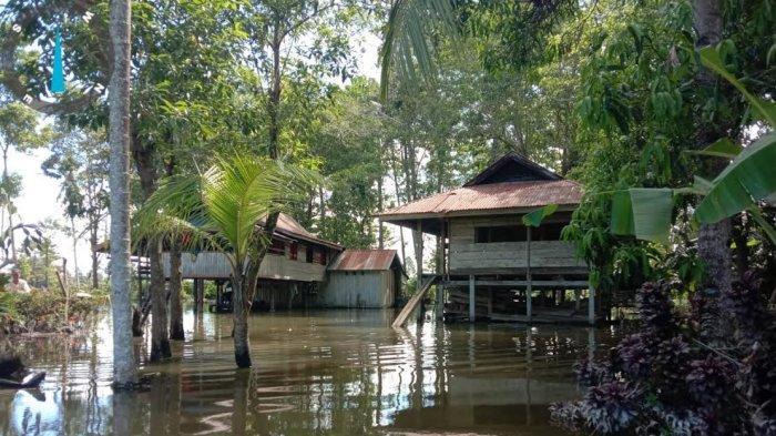 Banjir Rendam Pemukiman Warga di Urukumpang Luwu Utara