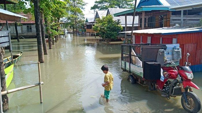 Akibat Banjir, 10.659 Rumah Warga di 6 Kecamatan Kabupaten Wajo Masih Terdampak