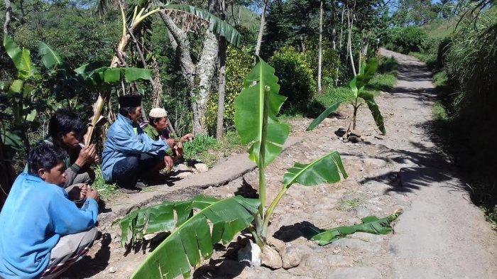 Jalan Rusak di Uluere Ditanami Pohon Pisang, Ini Janji Kadis PU Bantaeng