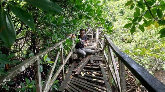 Fasilitas Wisata Hutan Mangrove Pulau Pannikiang Barru Terbengkalai, Padahal Selalu Ramai Pengunjung