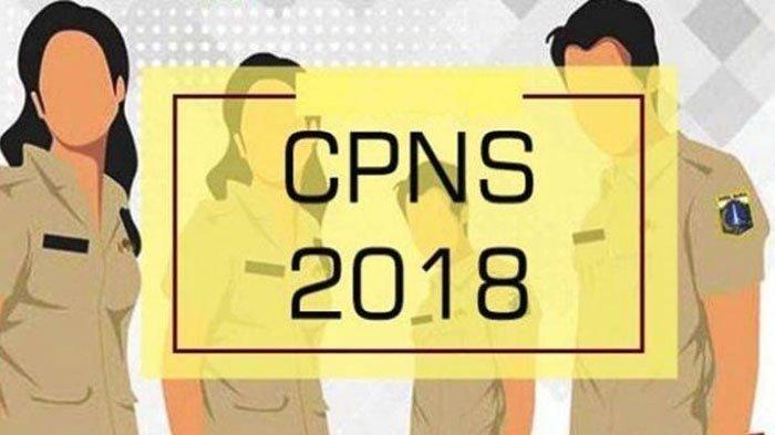 BKN Pakai Sistem Ranking -Pengumuman SKD CPNS Jateng, Makassar, Sulbar, dan 5 Instansi Ini Sudah