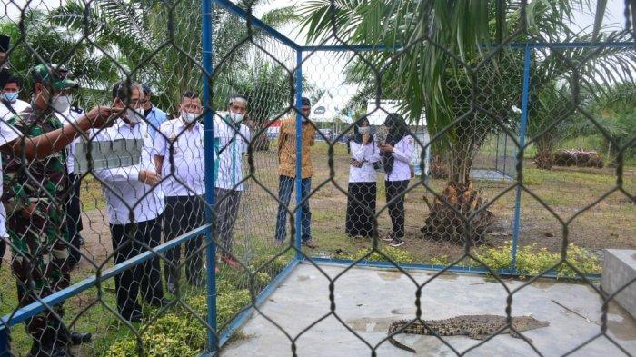 Ada Kebun Binatang di Desa Bulo Wattang Sidrap