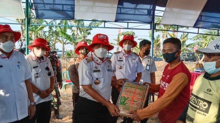 Pasca Banjir, Bantuan Benih Padi untuk Petani Wajo Mulai Disalurkan